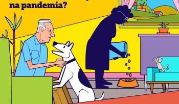 Telas Abertas: será que animais de estimação podem transmitir o novo coronavírus?